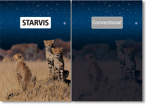 Undertaking for the use of STARVIS logo